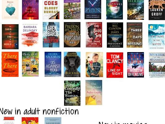New Books – Richfield Springs Public Library