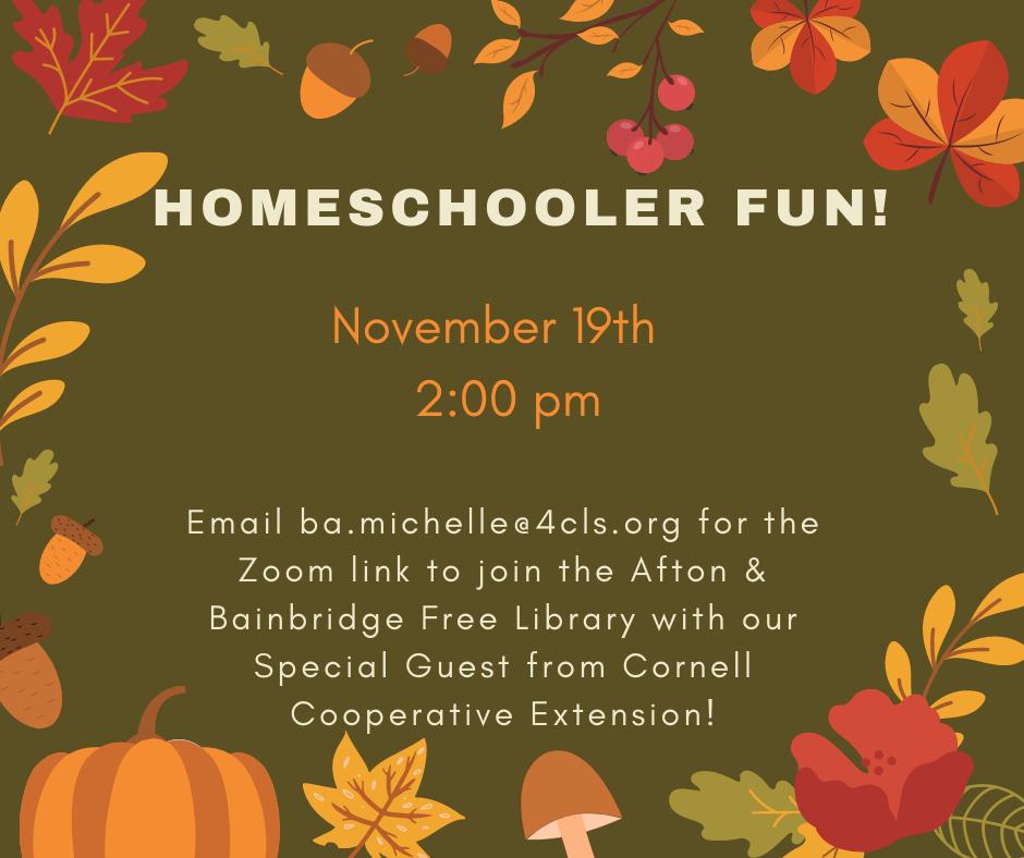 Homeschooler Fun!- Virtual Program- November 19